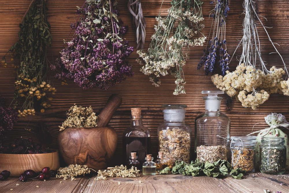 El valor de las hierbas aromáticas en la cocina